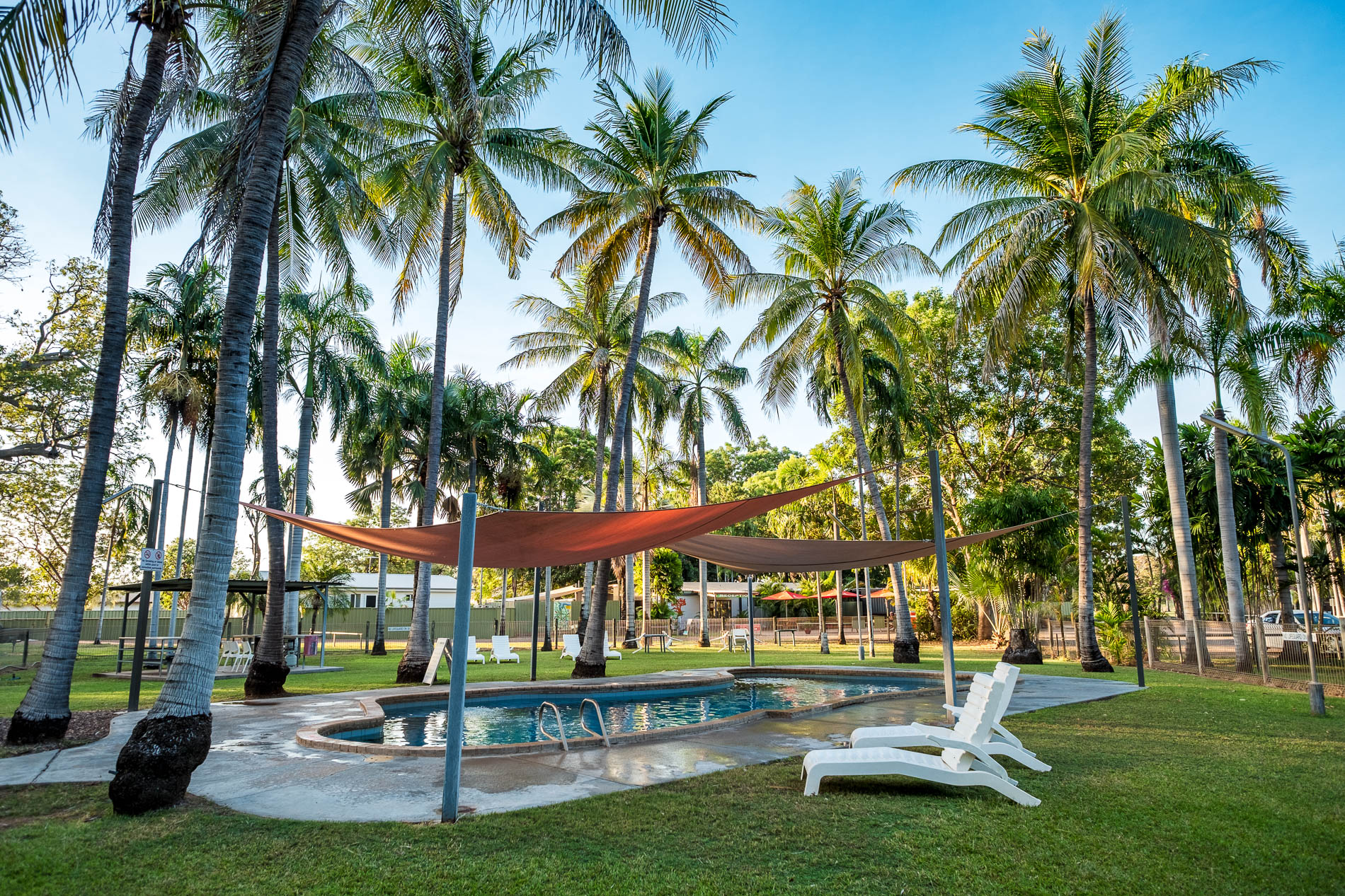 Coconut Palms Tropical Setting Pool