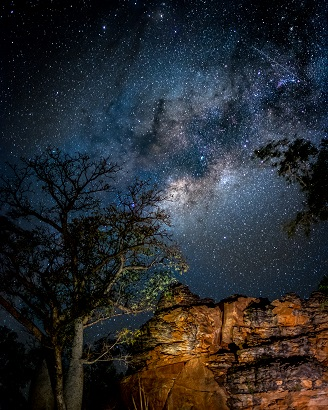 Milky Way Boab Tree