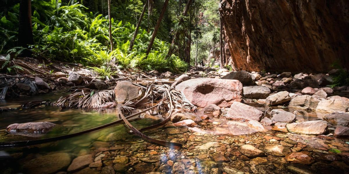 El Questro Gorge East Kimberley