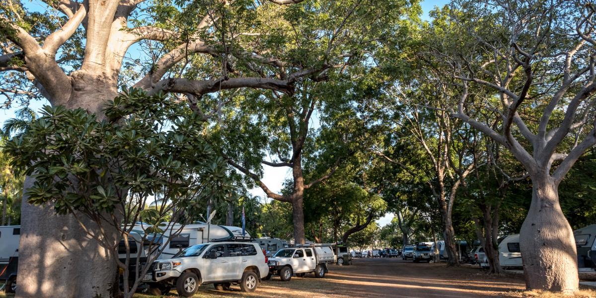 Powered sites amongst boab trees at Kimberleyland in Kununurra