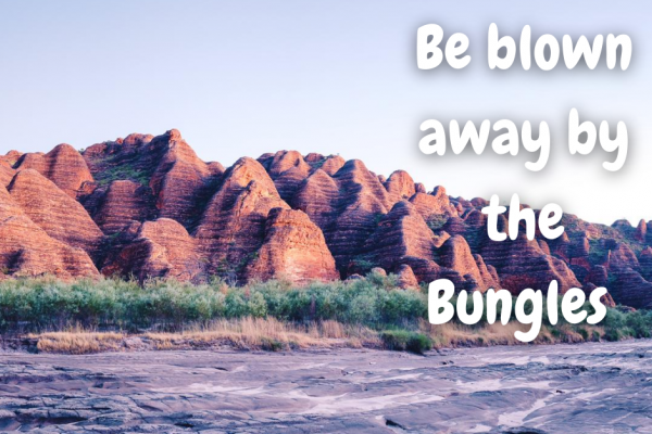 Be blown away by the Bungles
