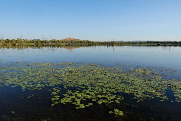 Lily Creek Lagoon on the doorstep of Kimberleyland