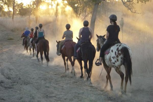 Yeehaa Horse Trail Rides