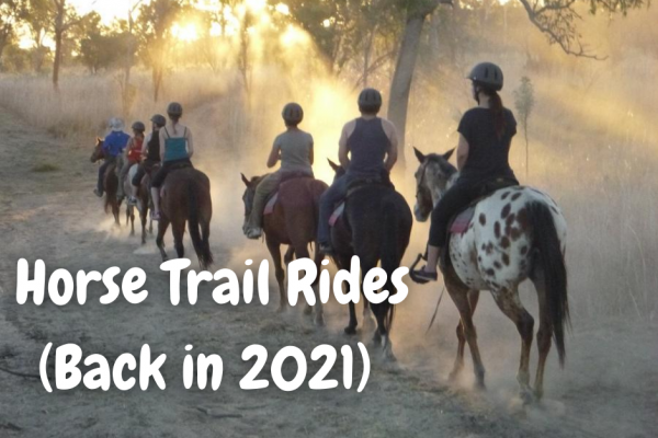 Kununurra things to do Horse trail rides