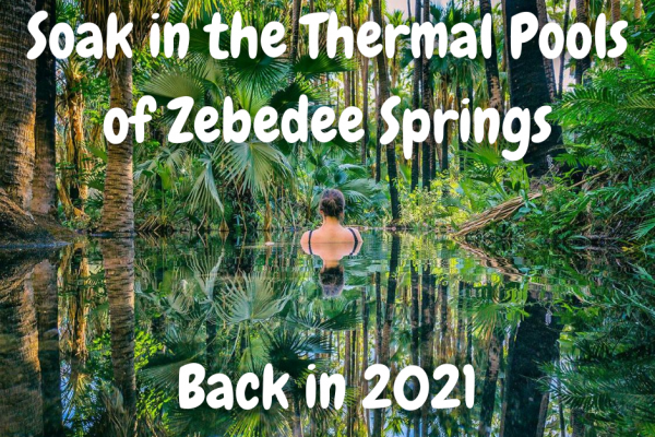 Soak in the Thermal Pools of Zebedee Springs